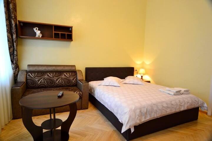 Ind. Square Awesome 2 Bedroom ID544 - Kiev - Lägenhet