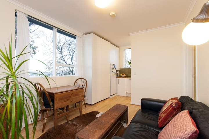 Quiet, cosy, sun-filled apartment - Richmond