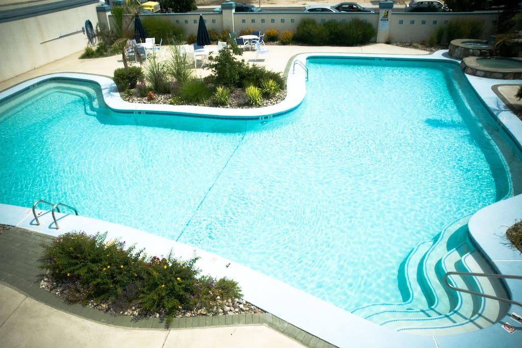 Extra Large heated pool!