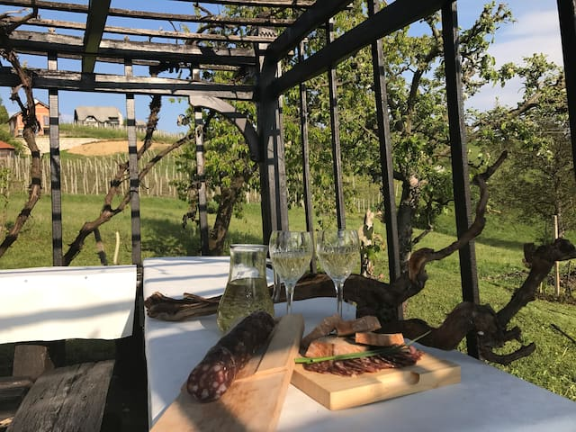 Vineyard house Rogaška Slatina - Kamence - House