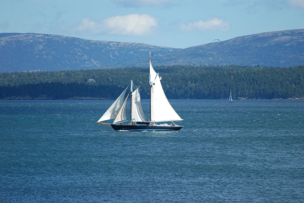 Windjammer sailing past the house.