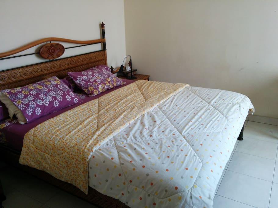 Guest (master) bedroom (photo 1)