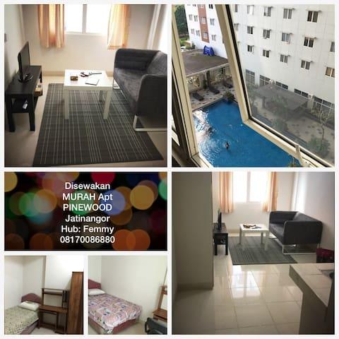 SEWA MURAH BULANAN - APT PINEWOOD - Jatinangor - Apartment