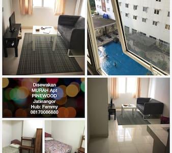 SEWA MURAH BULANAN - APT PINEWOOD - Jatinangor - 公寓