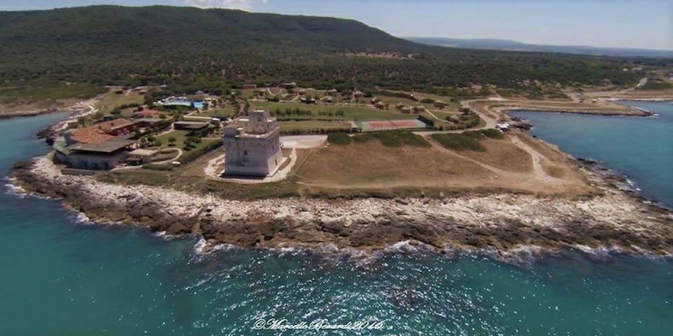 Monolocale sul Gargano a pochi chilometri dal mare