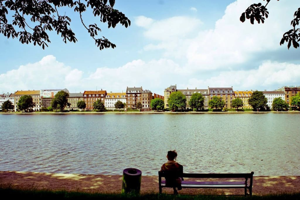 Our apartment is less than 50 meters from the Copenhagen lakes that border the inner city