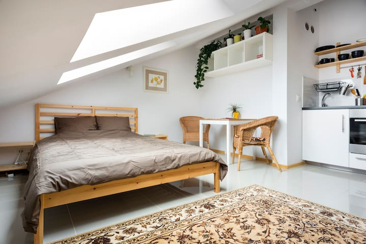 Loft with Lift near Royal Castle - Kraków - Apartment