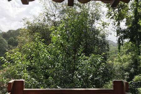 Habitación privada con vista a las montañas