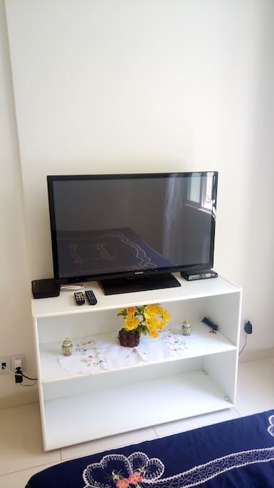 TV com canais básicos da net