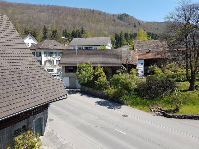 Atelierhaus mit Gartensitzplatz - Hausen am Albis - Hus