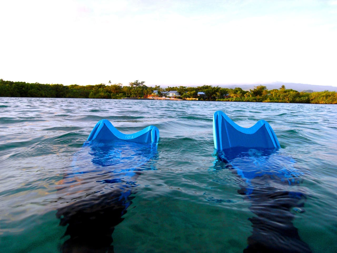 a view from the waterfront where you can swim, kayak, snorkel