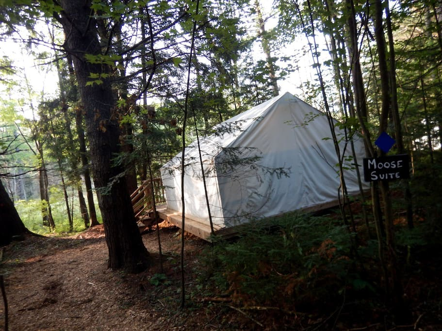 Canvas style glamping tents