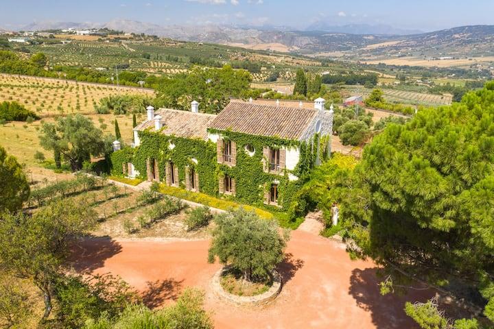 Habitación en Cortijo del siglo XIX entre olivos