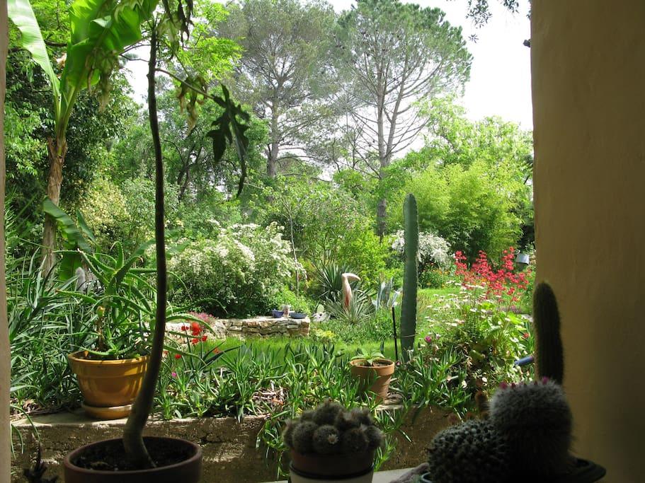 Vue du jardin depuis la chambre principale
