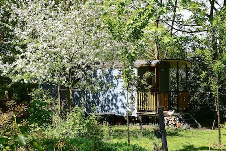 "Bed & Breakfast ""Eemboerveld"" - Onstwedde - Bed & Breakfast"