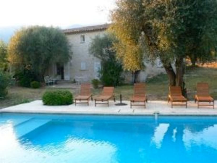 Beautiful villa surrounded by a peaceful garden and nice swimmingpool
