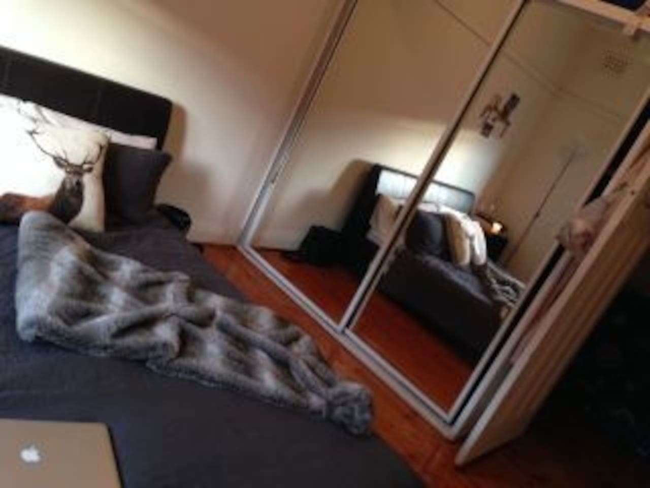 Large room, fully furnished in large two bedroom apartment