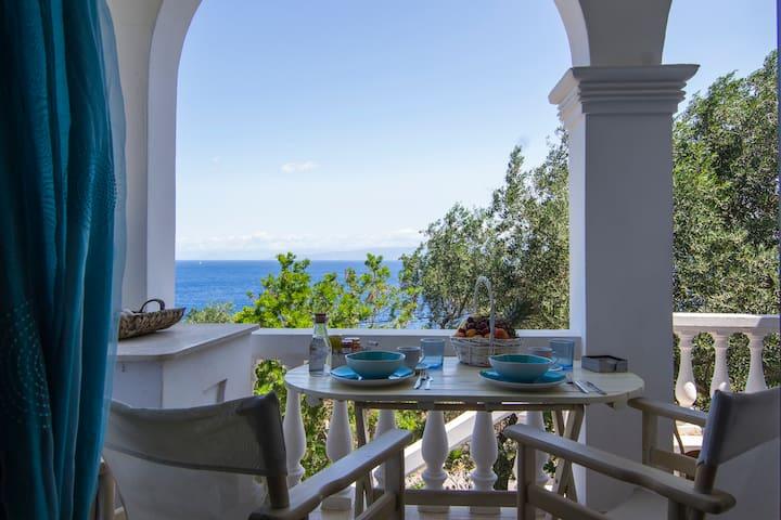 Sea View Beach Villa
