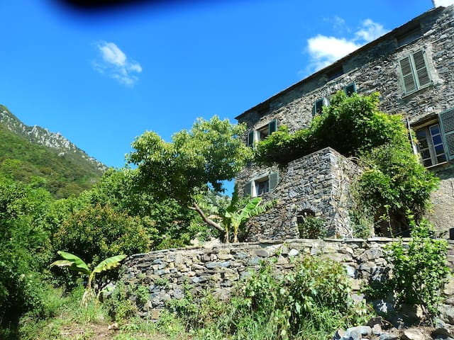 Authentic corsican village house  sea and mountain - Santa-Maria-Poggio - Rumah