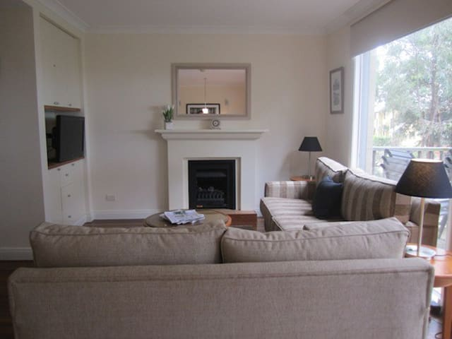 Open plan living - lounge room with living flame gas fire