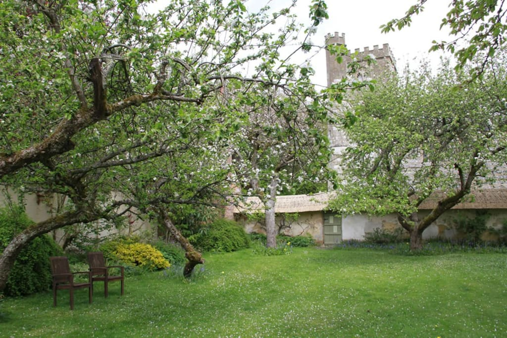 Thatched walled Garden with apple trees