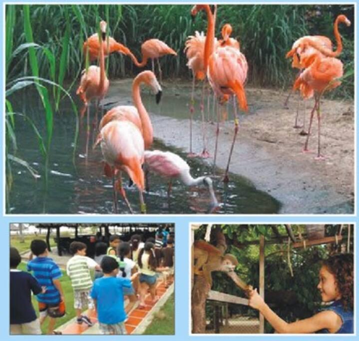 Zoológico de Barranquilla, un espacio de entretenimiento y aprendizaje.