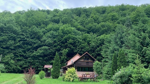 Cottage by the River Valea Draganului