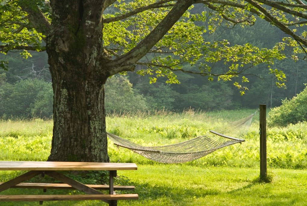 Side garden with picnic table, hammock, view of Lenox mountain