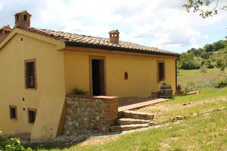 Chiusdino/San Galgano, appartamento - Chiusdino