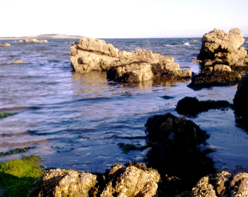 Lots of rocks and rockpools to explore