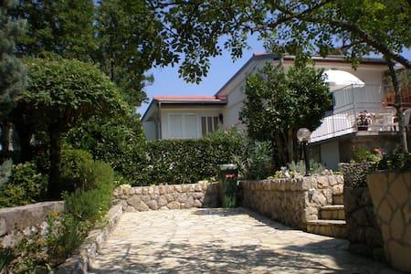 Holiday House Lipert Jadranovo - Jadranovo