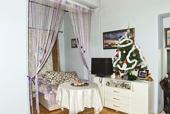 Apartment in the center of Cetinje - Cetinje - Appartement