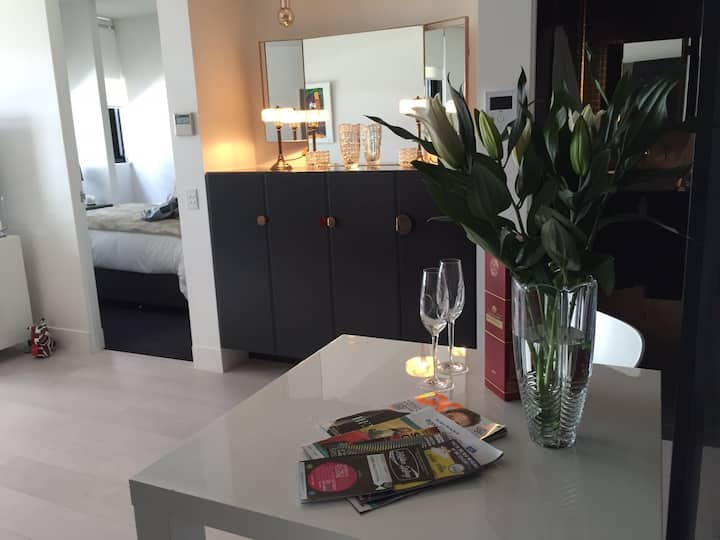 Stunning award winning designer apartment
