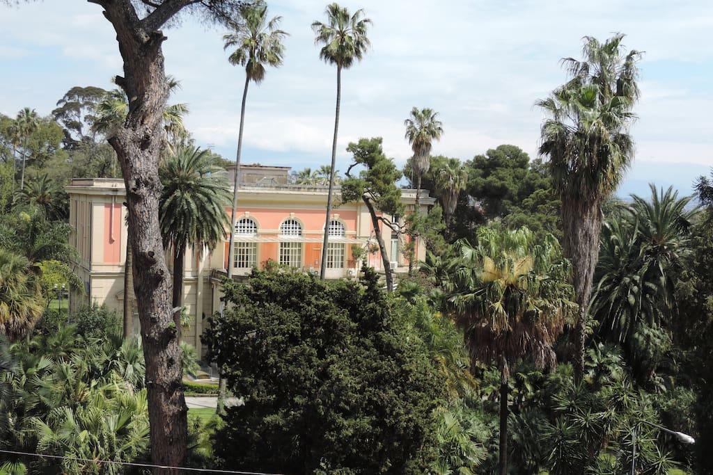 L'appartamento affaccia sull'Orto Botanico.