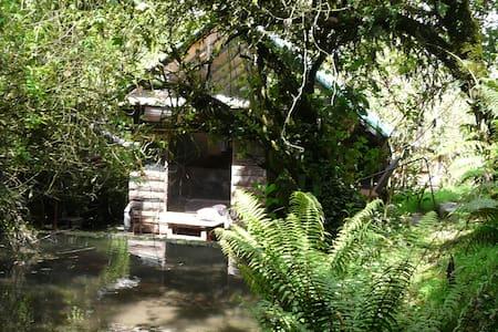 Cabaña en reserva forestal
