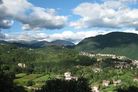 Beautiful Classic Tuscan Stone Farmhouse Sleeps 8 - Borgo A Mozzano - Hus