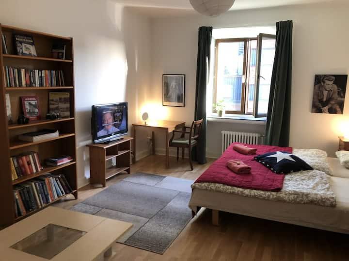 Svingeln residence/Apartment 2
