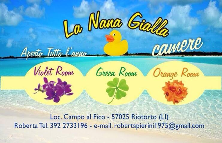 La Nana Gialla  (Violet Room) - Riotorto - Bed & Breakfast