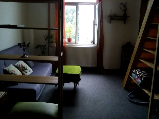 Small and cozy flat in the center - České Budějovice - 公寓