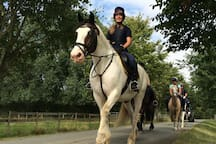 Visit us in the blue cabin to book riding lessons or hacks! Follow @cotswoldriding on Instagram!
