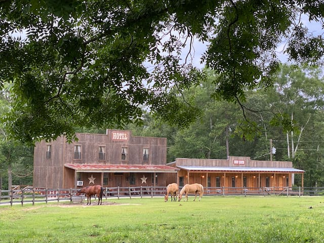 Mofo Manor Hotel Room on Elegant Horse Estate