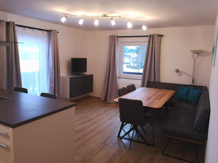 "spacy and cosy apartment ""Ameisenberg"" in Skiamade"