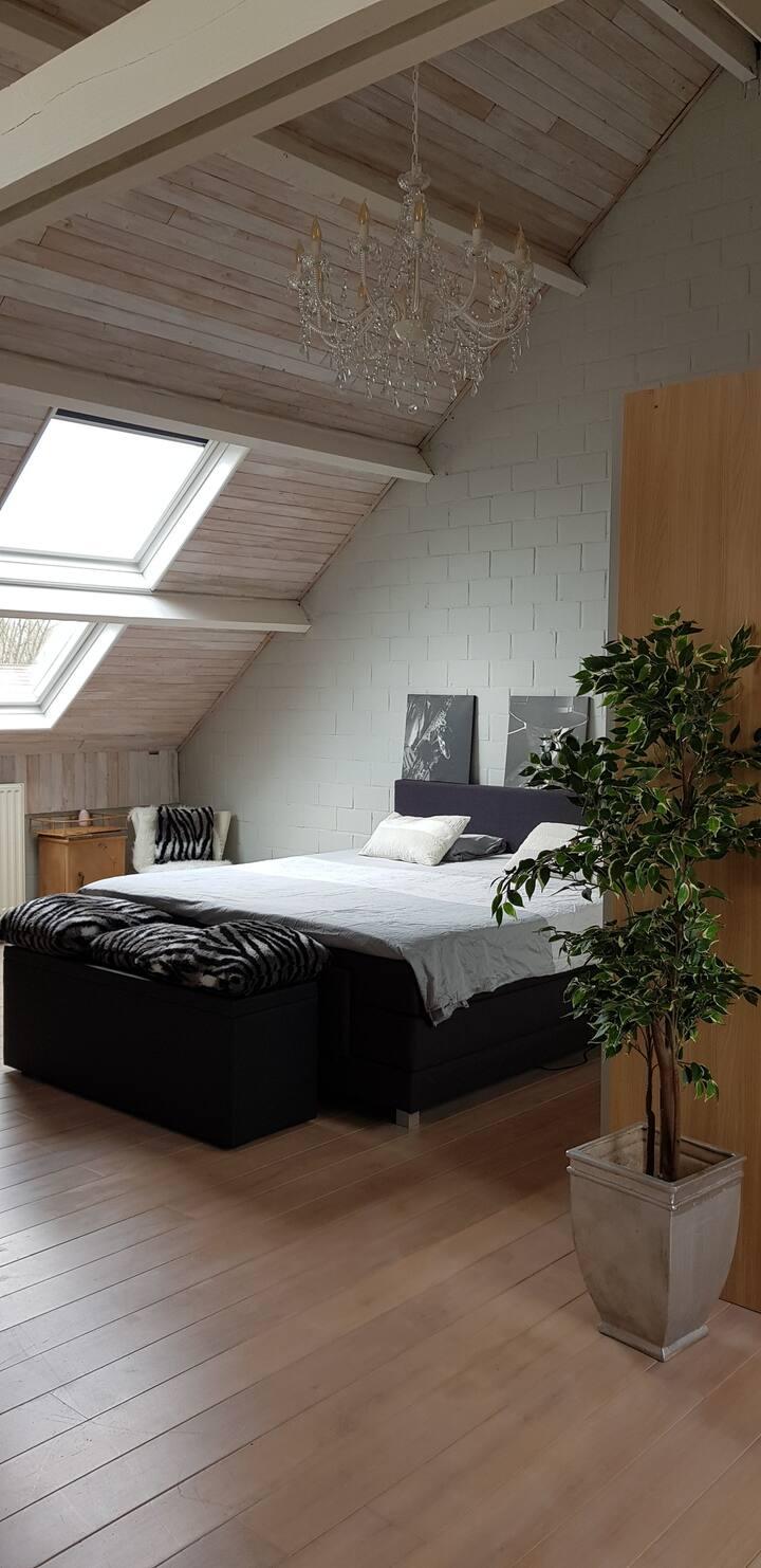 3 Rooms at 7 kilometres from Tomorrowland Boom