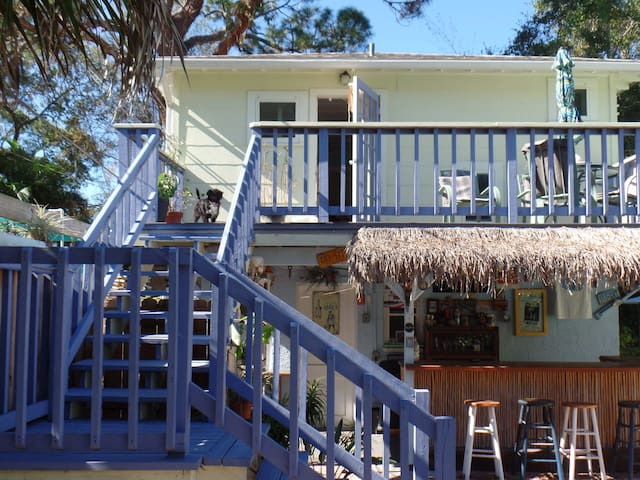 Downtown Dunedin, FL, 1 bedroom - Dunedin - Daire