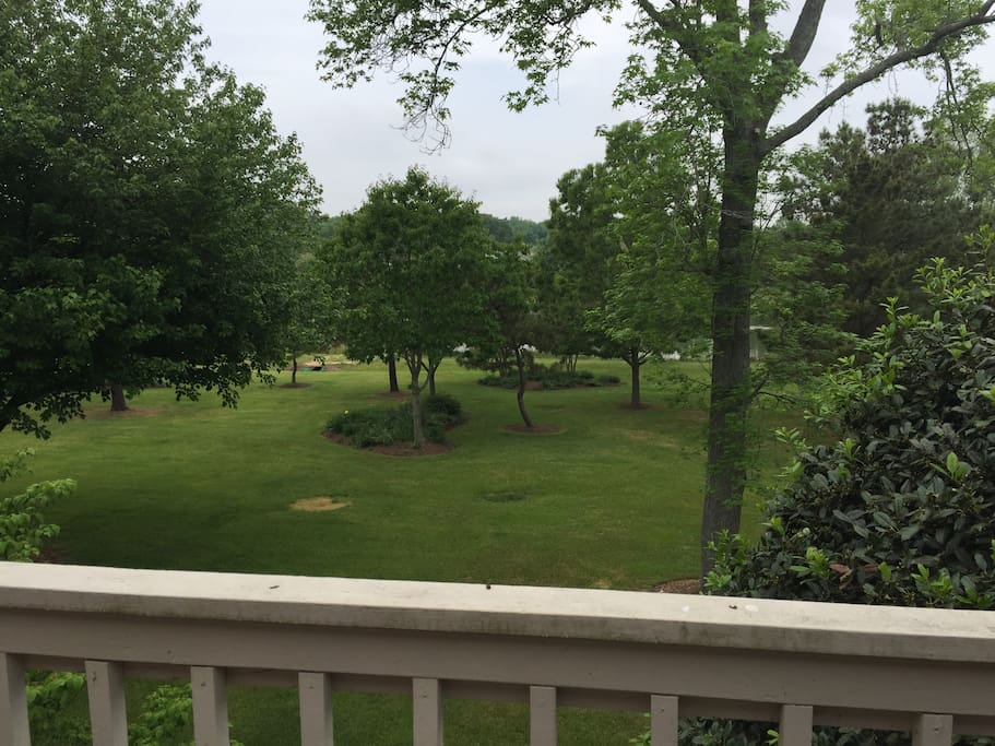 View from back deck.