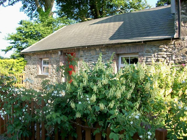 Charming Mill Cottage - New Ross - Stuga