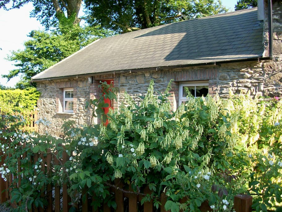 charming mill cottage cabanes louer new ross wexford irlande. Black Bedroom Furniture Sets. Home Design Ideas