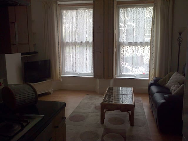 Spacious one bedroom flat - Plymouth - Apartamento