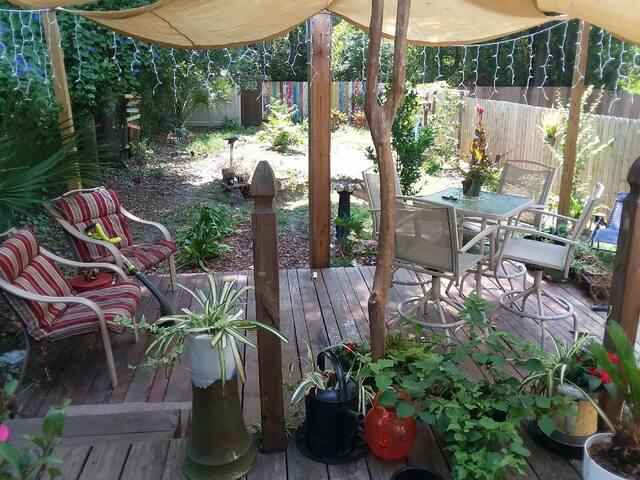 Bird Sanctuary back yard