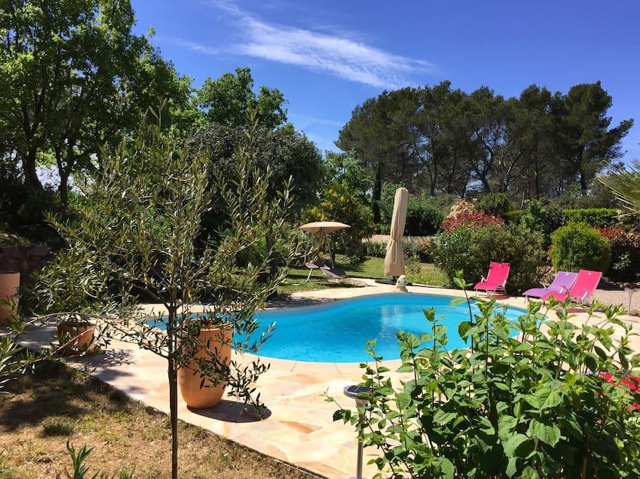 L'espace piscine terrasse